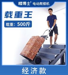 250D电动爬楼机